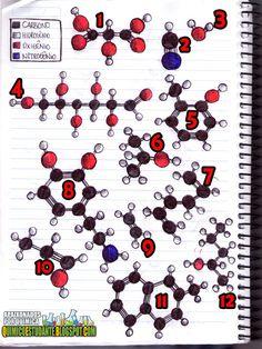 Químico Estudante: Estudando Química orgânica