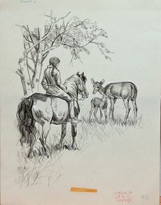 Summer Pony    This original pencil drawing of a girl on a pony encountering deer  appears on page 27 of the book: Summer Pony by Jean Slaughter Doty,  published in 1973 by The MacMillan Company and illustrated  by Sam Savitt.