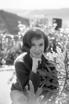Mary Tyler Moore in an outdoor photo session She appears in The Dick Van Dyke Show as Laura Petrie Image dated January 22 1964 Los Angeles California Golden Age Of Hollywood, Hollywood Stars, Classic Hollywood, Classic Movie Stars, Classic Tv, Laura Petrie, Tv Icon, Mary Tyler Moore, Stars Then And Now