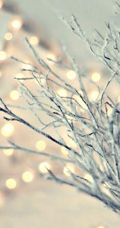 weihnachtsbeleuchtung windlichter basteln ideen farbe weiss