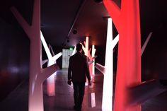 Asus #GlowOflife #MDW2016
