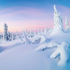Lapland, I miss you. • • • #beautyofsuomi #beautifuldestinations #earthpix #finland_photolovers #finland_frames #onlyinlapland @onlyinlapland @ourfinland @visitlapland #visitlapland #visitscandinavia #ig_shotz_jan18 #yllas #ylläs #lappi #visityllas #nature_perfection #nature_marvels #nature_good #earthpix #earthfocus #ourplanetdaily #ournaturedays #suomiretki