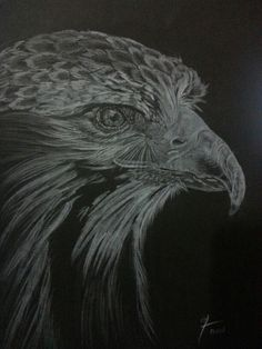 Eagle White pencils on linen black paper 20x30cm
