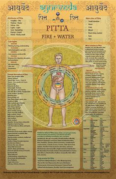 The #PITTA poster gives basic descriptions of the following ayurvedic concepts: 1. Qualities of the Dosha. 2. Body type description (including time of day, season etc.) 3. Sub types. 4. Main sites of Dosha 5. What imbalances the Dosha. 6. Manifestations of imbalance. 7. How to treat. 8. Herbs for Dosha. 9. Yoga asanas.