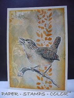 PAPER - STAMPS - COLOR: A new favorite stamp - the wren!
