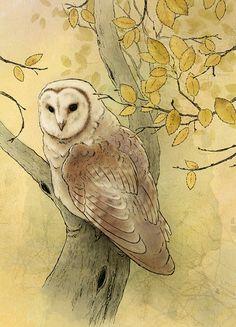 Barn Owl Wildlife Bird Art  Archival Art by LaPetiteMascarade on Etsy.