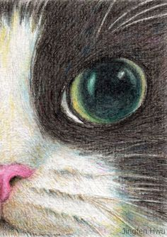 cat art print of original artwork, cat drawing, closeup of a tuxedo cat, cat lover gift unique art Human Face Drawing, Cat Drawing, Cartoon Drawings, Animal Drawings, Pencil Drawings, Cat Lover Gifts, Cat Lovers, Cat Art Print, Cat Character