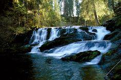 Mystische Atmosphäre am Wasser - ©Kleinwalsertal