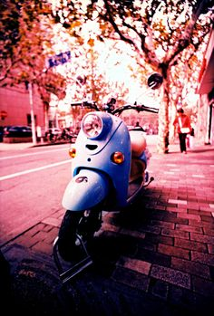 I am fairly certain this is a lambretta but AWWWW anyway