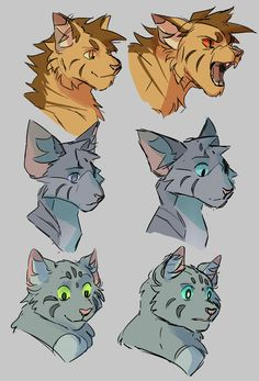 What if,,, all their eyes changed colors when they used their powers Warrior Cat Oc, Warrior Cats Series, Warrior Cats Books, Anime Wolf Drawing, Cat Expressions, Warrior Cat Drawings, Cat Jokes, Love Warriors, Disney Lion King
