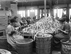 Empleadas de la planta de Vincennes, cerca de París, trabajando en la fabricación de gafas protectoras.