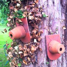 Terra cotta roofing tiles and pots become birdhouses. Bird Houses Diy, Wild Birds, Birdhouses, Terra Cotta, Natural Materials, Pots, Tiles, Yard, France