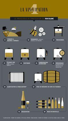 infographie bouteille vin - Recherche Google