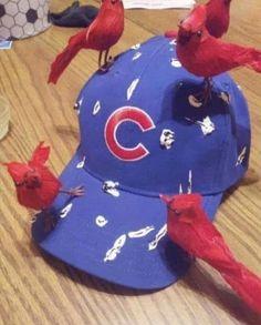 St Louis Baseball, St Louis Cardinals Baseball, Stl Cardinals, Wedding Humor, Animal Design, Card Games, Kids Rugs, Cards, Etsy