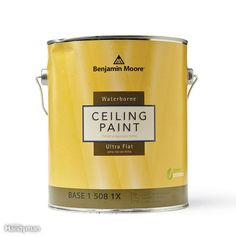 A pro home painter shares his picks for the best ceiling paint, tips for painting smooth and textured ceilings, with equipment selections. Textured Ceiling Paint, Best Ceiling Paint, Ceiling Texture, Painting Ceilings Tips, Painting Tips, House Painting, Painted Ceilings, Yellow Ceiling, Colored Ceiling