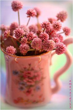 Pink Pom Pom by *emerald753 on deviantART on @We Heart It.com -