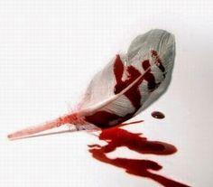 THE END © -L'escriptor esgarrapa unes últimes línies i clava les envermellides conques en el producte de la seva ment enfebrada. El pàl·lid rostre sembla reviure. Ha aconseguit copsar amb total crueltat i realisme l'escena final. La torturada ploma podrà gaudir del descans que es mereix. (...) #murderer #writer