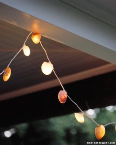 DIY Shell Fairy Lights - I must try this and collect shells next time I go to the beach!