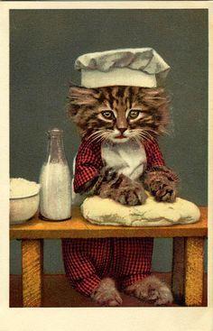 chat patissier circa 1940-50 by merlinprincesse, via Flickr