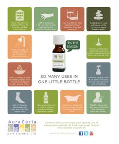 Eucalyptus Oil ideas...