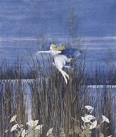 View Fairy and sedge grass by Ida Rentoul Outhwaite on artnet. Browse upcoming and past auction lots by Ida Rentoul Outhwaite. Elves And Fairies, Fairy Pictures, Vintage Fairies, Beautiful Fairies, Australian Art, Flower Fairies, Fairy Art, Magical Creatures, Art Auction