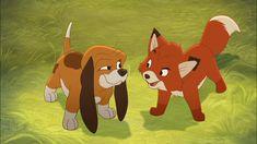Rox & Rouky