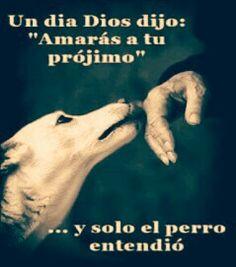 .. así es, porque solo el perro SÍ es fiel ..
