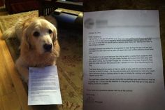 The ultimate in dog shaming - being sent home with a letter from the principal!