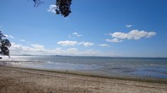 Titirangi and French Bay Loop - short walks in Auckland
