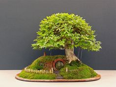 Diy Projects: Miniature Hobbit House From Lord of The Rings- Bonsai, dirt, faux grass, and sticks, including bark.