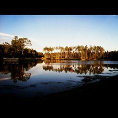 Brunswick, GA  Here's my view at the trail. Beautiful!