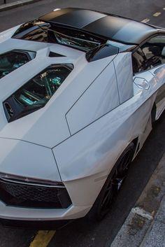http://chicerman.com  myheartpumpspetrol:  aventador roadster (source)  #cars