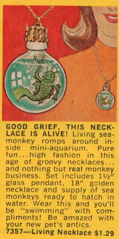 Retrospace: Vintage Scan Crap for Christmas - Greenland Studios 1969 Sea monkey Vintage Toys 1970s, Vintage Comics, Ty Stuffed Animals, Mini Aquarium, Blue Jay Bird, Sea Monkeys, Rock Flowers, Monkey Art, Pure Fun