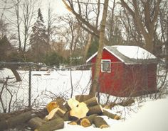 Red Shed / Snow