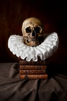 """Skull ruff still life by Kevin Best -- That is PERFECT for Yorrick, my skull! """"brought others laughter"""" -- Have my Shakespeare collection opened to the grave scene where Hamlet speaks of Yorrick, the court clown of his childhood, now dead and in the process of being buried!"""