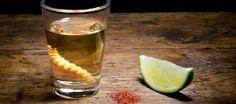 Agave Smackdown: Tequila vs. Mezcal