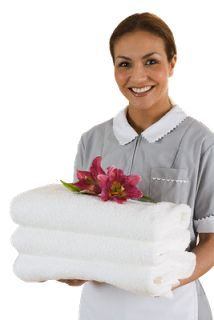 A Empregada Doméstica: Empregados Domésticos desempregados!