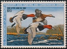 Federal Duck Stamp RW54 1987-88 Redhead Ducks - TR Duck Stamps, Etc.