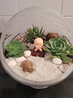 How to make a themed succulent terrarium Succulent Terrarium, Succulents Garden, Terrariums, Make Your Own, Make It Yourself, How To Make, Reading Room, Reiki, Unique