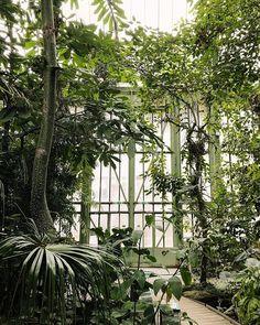 Jardin des Plantes.  #HaarkonGreenhouseTour #HaarkonInParis