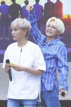 Seungkwan and Jeonghan//Seventeen Seventeen Memes, Jeonghan Seventeen, Woozi, Wonwoo, Shinee, Got7, Vernon Hansol, Winner, Joshua Hong