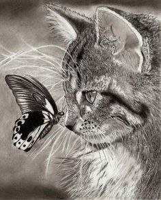 near-happiness: # beauty # art # cat # butterfly