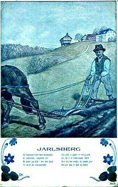 Vestfold Jarlsberg