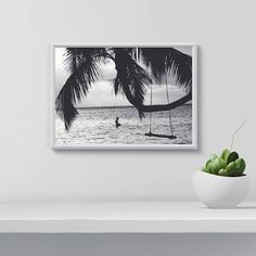 Palm tree wall art Palm tree Print Palm tree and Beach