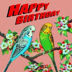 Budgies birthday card by SugarushUK/Sugarushuk. This image is taken from a battered rusty vintage tin box, lovingly retouched for a new generation to discover.