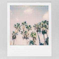 YAY! Pünktlich zum Start in die neue Woche ist mein neuestes Video online 🎉 Es gibt eine kleine Rückschau auf das was in der Youtube-Pause passiert ist und eine Änderung 😉 Link: https://youtu.be/vx9vGYu7fTY  #Polaroid #Urlaub #Girona #ImpossibleFilm #Analog #Polaroid600 #Palmen