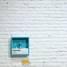 Pantone  #art #color #design #wood #minimal #minimalist