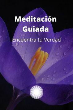 Yoga Mantras, Yoga Meditation, Respiration Yoga, Qigong, Science And Nature, Book Lists, Yoga Poses, Relax, Chakra