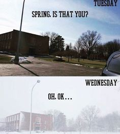 ImgLuLz Serve you Funny Pictures, Memes, GIF, Autocorrect Fails and more to make you LoL. Funny Cute, The Funny, Daily Funny, Stupid Funny, Meanwhile In Canada, Weather Memes, Funny Weather, Haha, Just For Laughs