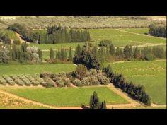 1/4 The Artistic Garden - Monty Don's French Gardens - YouTube